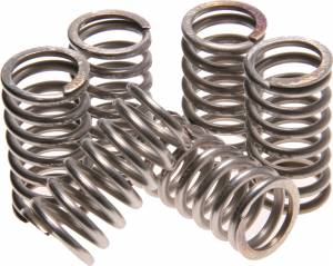SpeedyParts - SPEEDYMOTO Polished Clutch Springs (Qty 6 Springs)