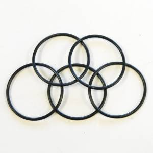 Corse Dynamics - Corse Dynamics Billet Aluminum Oil Drain Plate Cover: Spare O-Ring 5-pack - Image 1