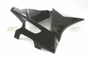 CDT - CDT CF Fairing Side Panel Lower Right: S1000RR - Image 1