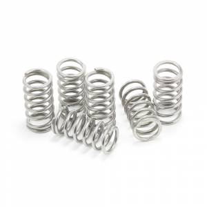 EVR - EVR Ducati Stainless Steel Clutch Spring Kit