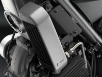 RIZOMA - Rizoma Oil Cooler Cover: Ducati Scrambler - Image 1