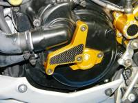 Ducabike Water Pump Protection: MTS1200 / Streetfighter / S4R/ S4RS
