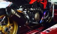 Akrapovic - Akrapovic Heat Shield for Ducati Monster 821 / 1200 / S / R - Image 2