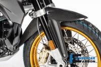 ILMBERGER CARBON - Ilmberger Carbon Fiber Gloss Front Fender: BMW R1250GS, Adventure