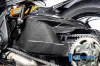 ILMBERGER CARBON - Ilmberger Carbon Fiber Swingarm Cover: Ducati Diavel 1260/S