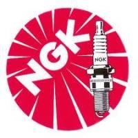 NGK - NGK Spark Plug [DCPR8E]