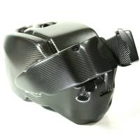 EVR - EVR Carbon Fiber Airbox with Air Filters & Intake Tubes: Streetfighter - Image 5