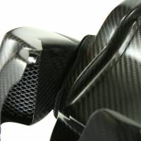 EVR Carbon Fiber Airbox with Air Filters & Intake Tubes: Streetfighter