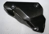CDT CF Exhaust Guard: OEM 1198-848