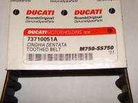 DUCATI OEM Timing Belt: Monster 600, 620, 750, 695, 800, S2R800 / Super Sport 620, 750, 800 / Multistrada 620